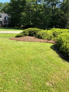 Lawn Care Darlington SC - Redefined Bed