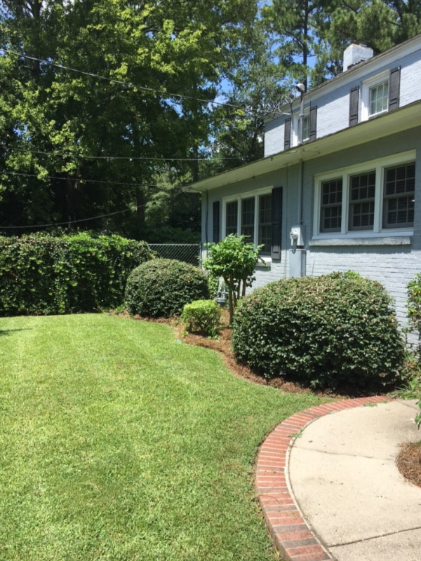 Lawn Care Florence SC - Shrub Trim - After