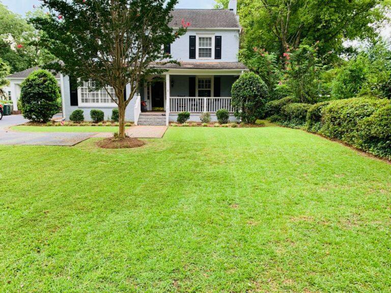 Fresh Cut Lawn Florence SC